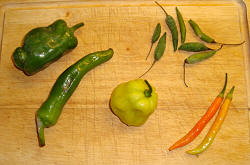 chili con carne lavet på mindst 5 forskellige chilier